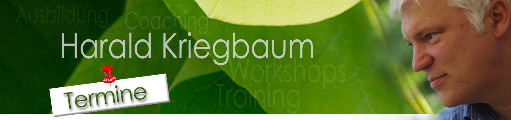 Termine für Beratung, Coaching und Workshops